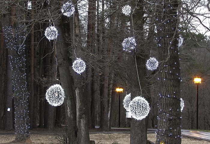 Декорации из гирлянд на лыжероллерной трассе имения Героя России Ларисы Лазутиной