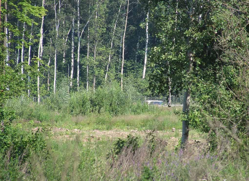 Razvyazka-Trehgorka-Severniy-obhod-2