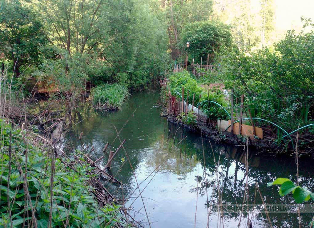 Reka Likova v Odincovskom rajone