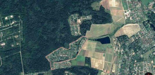 2 гектара леса в Одинцовском районе незаконно отдали под застройку