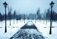 Парк им. героев Отечественной войны 1812 года Голицыно